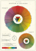 Poster - System of Colors