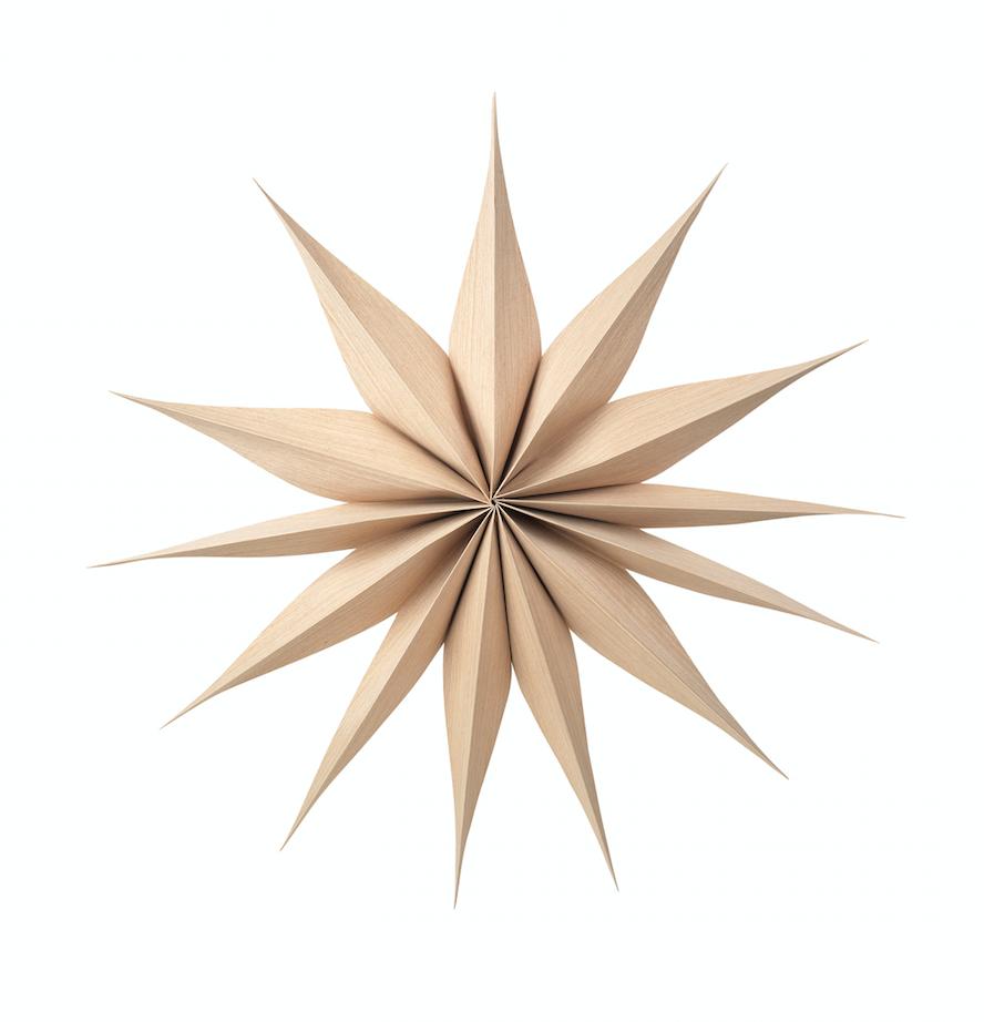 Julstjärna 'Venok' - Ljust trä (L)