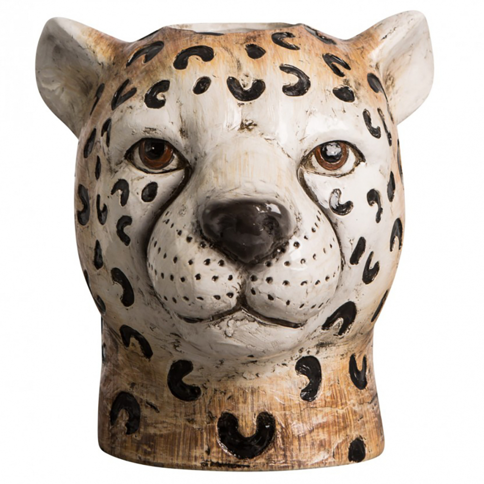 Vas 'Cheetah