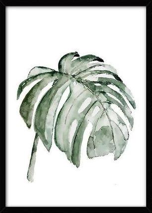 Canvas Poster L - Tropisk växt 7