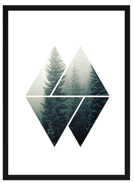 Poster - Granskog Grafisk