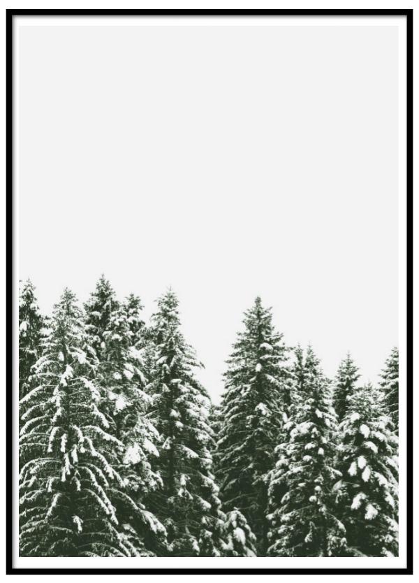 Poster - Nordiskt landskap 2