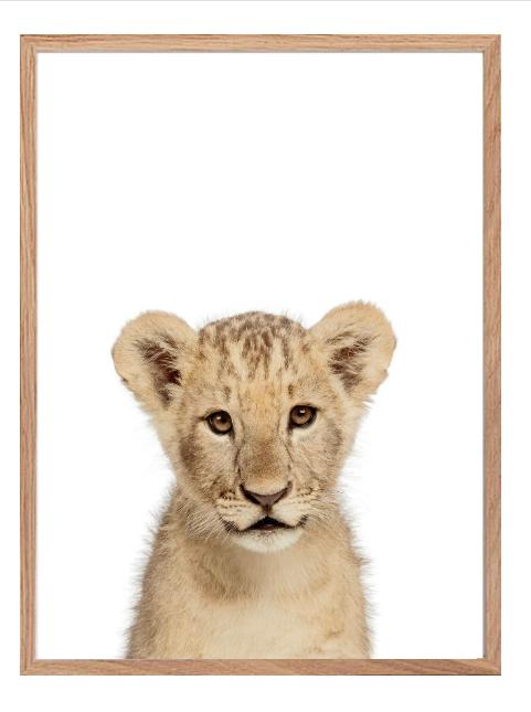 Poster - Lejon