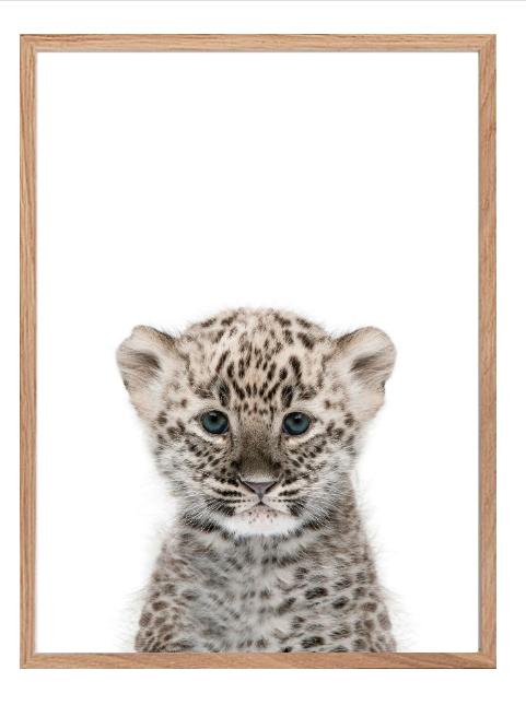 Poster - Leopard